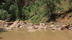 Virgin River flows across a rocky river bed in Zion Canyon Stock Footage