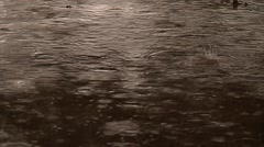 Lite Rain in Puddle Stock Footage