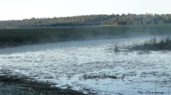 Light fog over a small lake Stock Footage