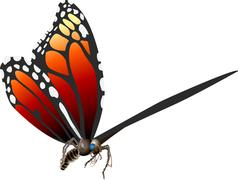 Butterfly illustration Stock Illustration