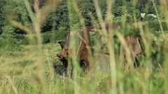 Large rusty vechicle behind long grass 5 Stock Footage