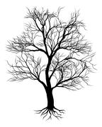 Hand drawn old tree silhouette Stock Illustration