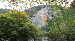 France Gorges of Tarn with cliff  Stock Footage