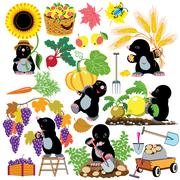 Set with mole working in the garden Stock Illustration