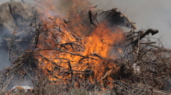 Firefighters extinguish a fire the steppe Stock Footage