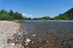 The mountain river with rapid current Stock Photos