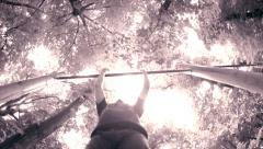 Man doing pull-ups in a park Stock Footage
