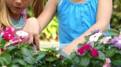 Tilt up to little girls having fun planting flowers Stock Footage
