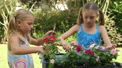 Wide shot little girls planting flowers Stock Footage