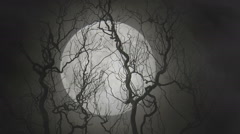 Full moon - real footage  Stock Footage