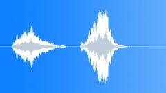 Wood Squeal: Door Hinges, Screak Shrill & Reverberant - V02 Sound Effect