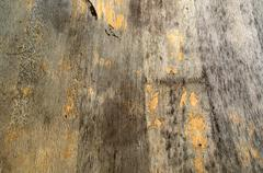 distressed wood background - stock photo