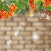 Autumn collage. Stock Photos