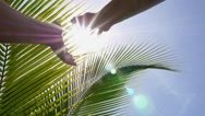 Stock Video Footage of Hands Holding the Sun. Slow Motion.
