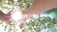 Stock Video Footage of Hands Holding the Sun through Rich Tree Foliage.