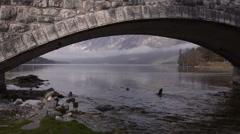 Slovenia. Bridge over the river Stock Footage