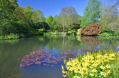 The Lake in an English country garden - stock photo
