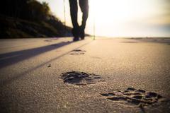 nordic walking sport run walk motion blur outdoor person legs stick sticks tr - stock photo