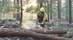 Stock Video Footage of Firefighter with chain saw