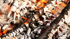 Firebrands of picnic campfire background Stock Footage