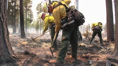 Three Firefighters with shovel controlling hot spot Stock Footage