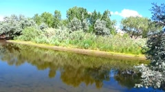 Lush River Bank Carson River Stock Footage