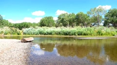 Wide Slow Moving Carson River Stock Footage