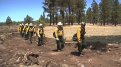 Fire crew walking in line along trail - stock footage