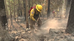 Firefighter with pulaski digging hot spots Stock Footage