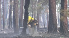 Stock Video Footage of Firefighter with chain saw dropping burnt tree