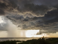 4K-DCI Large Florida Thunderstorm Structure Timelapse 4k Stock Footage