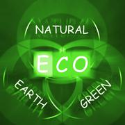 Eco on blackboard displays environmental care or eco-friendly nature Stock Illustration