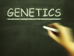 genetics chalk means genes dna and heredity - stock illustration