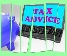 Tax advice piggy bank shows professional advising on  taxation Stock Illustration