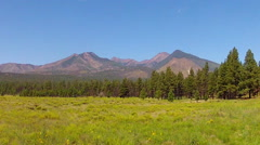 San Francisco Peaks Across Green Meadow- Flagstaff AZ Stock Footage