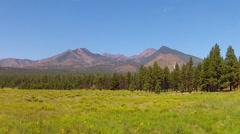 Stock Video Footage of San Francisco Peaks Across Green Meadow- Flagstaff AZ