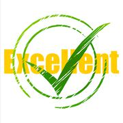 excellent tick meaning pass yes and excellency - stock illustration