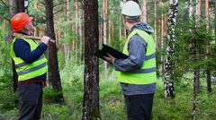 Forest Officer with worker in forest Stock Footage