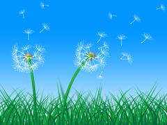 Stock Illustration of sky dandelion indicating green grass and grassy