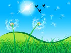 Birds grass meaning dandelion flower and nature Piirros