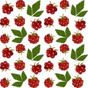 Stock Illustration of arctic bramble