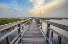 a long and straight wooden wetland walkway with sunset sky - stock photo
