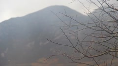 Shallow DOF of Branches in the mist with mountain BG - English Countryside Stock Footage