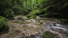Forest Stream Time Lapse Stock Footage