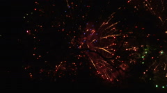 Fireworks and tree silhouette Stock Footage