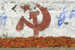 chili peppers and campaigning for the communist party, munnar, kerala, south  - stock photo