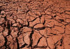 Dry cracks in red clay, drought, puntagorda, camino de la rosa, la palma, la  Kuvituskuvat