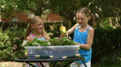 Little girls watering the plants and play Stock Footage