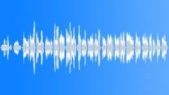 Shinobue Flute 4 - 篠笛 - stock music