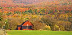 house in front of landscape with autumnal trees, sutton, quebec, canada - stock photo